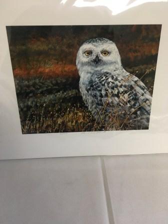 """Snowy Field"" owl painting by Paul Fletcher"