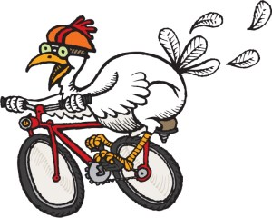 chicken-on-bike, white