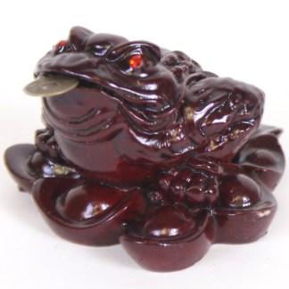 Money Toads