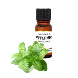 Peppermint USA Essential Oil