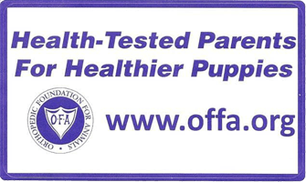 offa logo - Available Lab Puppies for sale in Kansas City Missouri