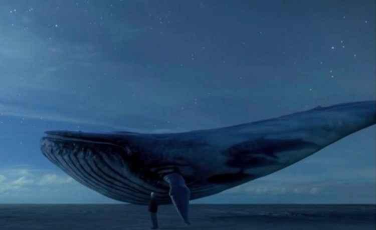 Baleia Azul: veja lista de recomendações do MP para uso seguro da internet