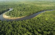 A emenda em projeto de lei que expõe Pantanal a avanço de agrotóxicos a hidrelétricas