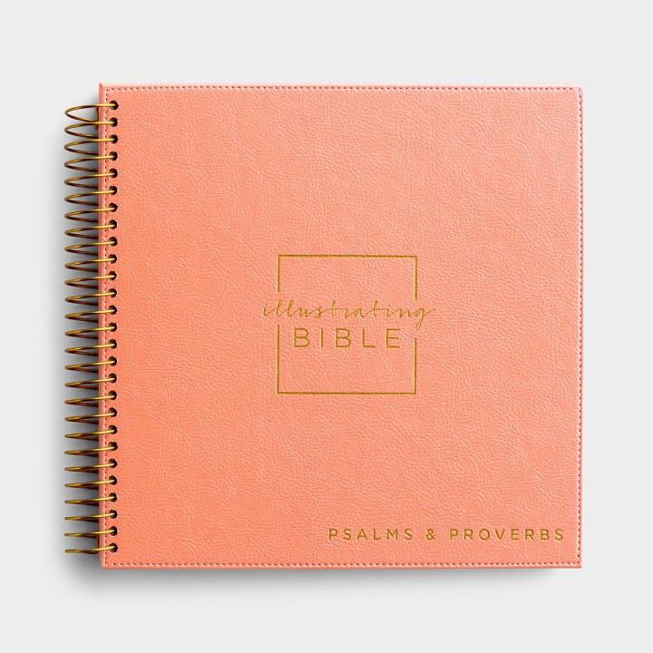 NIV Illustrating Bible - Psalms & Proverbs