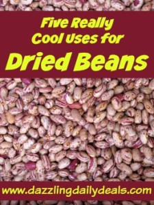 5 really cool uses for dried beans life hacks