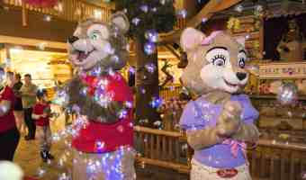 BOOK NOW – Spring -A- Palooza  at Great Wolf Lodge