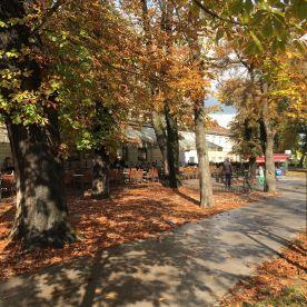 karlovac-jesen-2016-11
