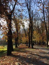 karlovac-jesen-2016-5