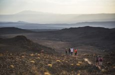 Hiking at sunset in Cactus Valley (Los Cardones Ravine), Atacama Desert, North Chile