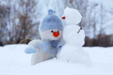 Photo of snowmen