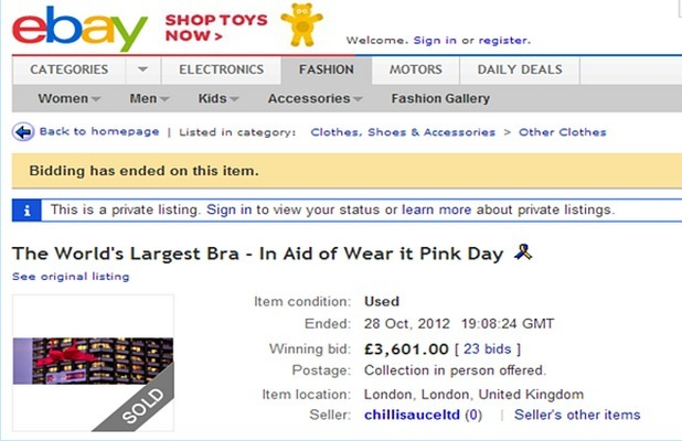Woman's Bra ebay Auction Fetches £3,600