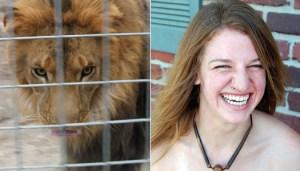 Lion's cage door left open: Lions Keeps Intern In California