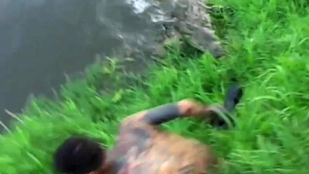 Crocodile In Costa Rica Near Snaps Up Man Snapping Photos