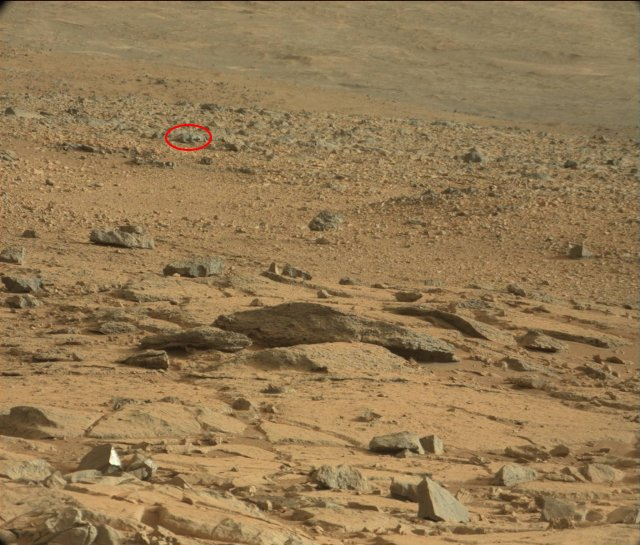 Can you Where's Waldo? a space rat out of this picture? Here it is: