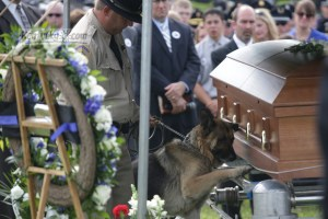 The 33-year-old officer was killed in a suspected ambush on Saturday and laid to rest soon after, according to the Lexington Herald-Leader. Ellis' canine partner, Figo, who worked with him to find drugs and illegal substances, kept a vigil beside his casket.