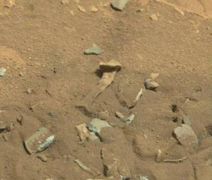 'Alien thigh bone' on Mars: Excitement from alien hunters at 'evidence' of extraterrestrial life