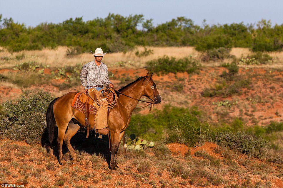 More than 750 cowboys work the land, and are accommodated in 20 camps when they are out on the range