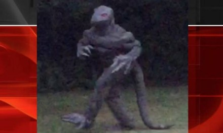 Lizard Man South Carolina Spotted Again