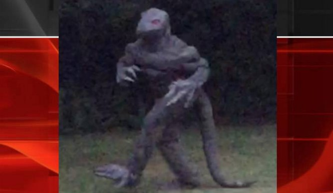 Lizard Man Spotted In S outh Carolina: The Lizard Man Returns (photo)