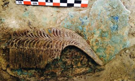 Greece warrior tomb: Grave of 'Griffin Warrior' Discovered In Pylos (PHOTO)