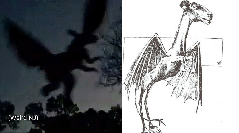 NJ residents said they have spotted the Jersey Devil in the state before (Weird NJ/Wikipedia)