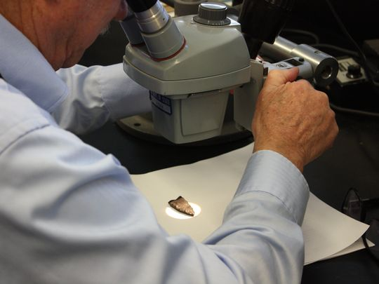 David Parris of the New Jersey State Museum examined the artifact found by Audrey Stanick in Seaside Heights and determined it was about 10,000 years old. (Photo: Courtesy of the New Jersey State Museum)