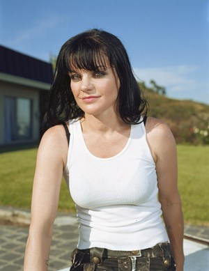 Pauley Perrette Attack:  Homeless Man Charged