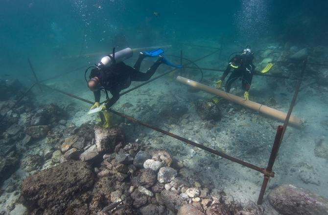 Vasco da Gama shipwreck Found With Rare Coin (PHOTO)