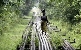 Nigeria oil revenue: $16 billion oil revenue loss traced to corrupt officials UPDATE