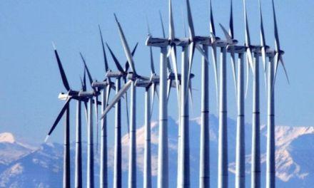Bald eagles & Wind Turbines Proposal Will Raise Kill Limit