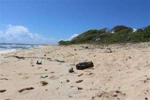 In this May 5, 2016 image provided by the state of Hawaii, ocean debris accumulates in Kahuku, Hawaii on the North Shore of Oahu. State officials say a study of the eight main Hawaiian Islands shows that ocean debris regularly accumulates