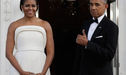 Michelle Obama state dinner dress stuns (PHOTO)