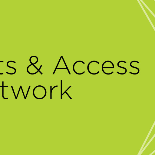 DC Arts & Access Network (Washington, DC disability organization for people with disabilities)