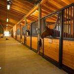 Horse Riding Arenas Design And Construction Dc Builders