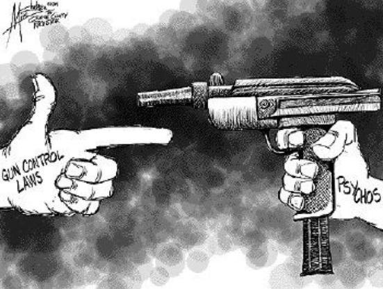 gun law cartoon