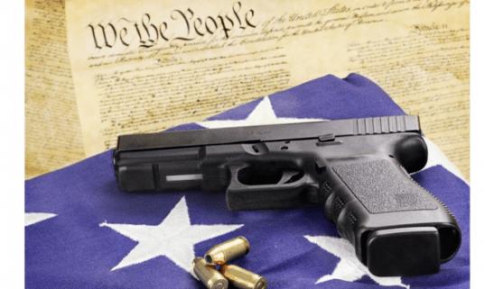 gun_constitution