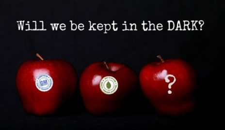 apples-GMO-DARK-Act-620x360-1