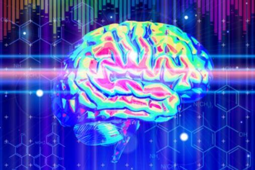 microwave-brain