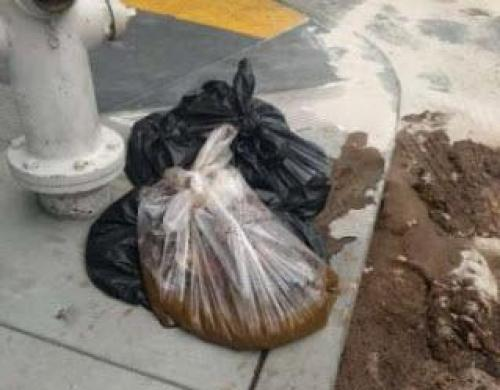The New Mayor of San Francisco has a Plan to Clean the Human Feces from the Streets -- You've Got to See This!