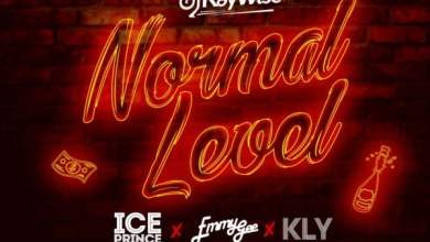 DJ Kay Wise artwork - DJ Kaywise feat. Ice Prince, Emmy Gee & KLY - Normal Level