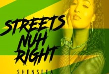 Shenseea artwork - Shenseea - Streets Nuh Right