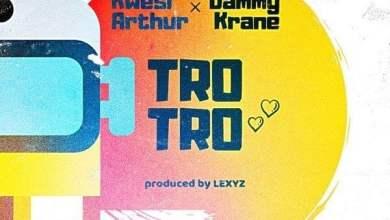 Photo of Kwesi Arthur x Dammy Krane – Trotro (Prod. by Lexyz)