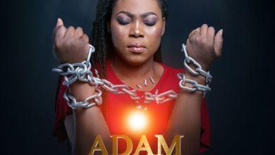 Photo of Joyce Blessing – Adam Nana (Prod. by Kaywa)