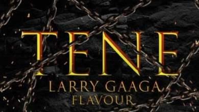 Photo of Larry Gaaga ft. Flavour – Tene (Prod. by Da Piano)