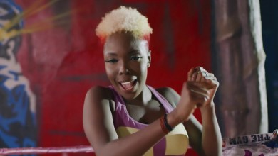 Photo of Feli Nuna ft. Quamina MP – Azumah (Remix)(Official Video)