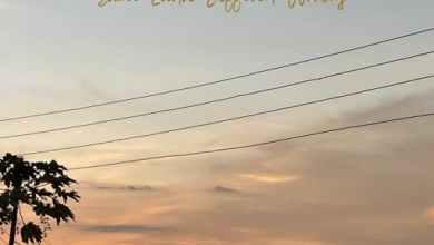 omar sterling same earth diff worlds album - Omar Sterling - Dangerous Love ft. Mugeez, Efya & R2Bees
