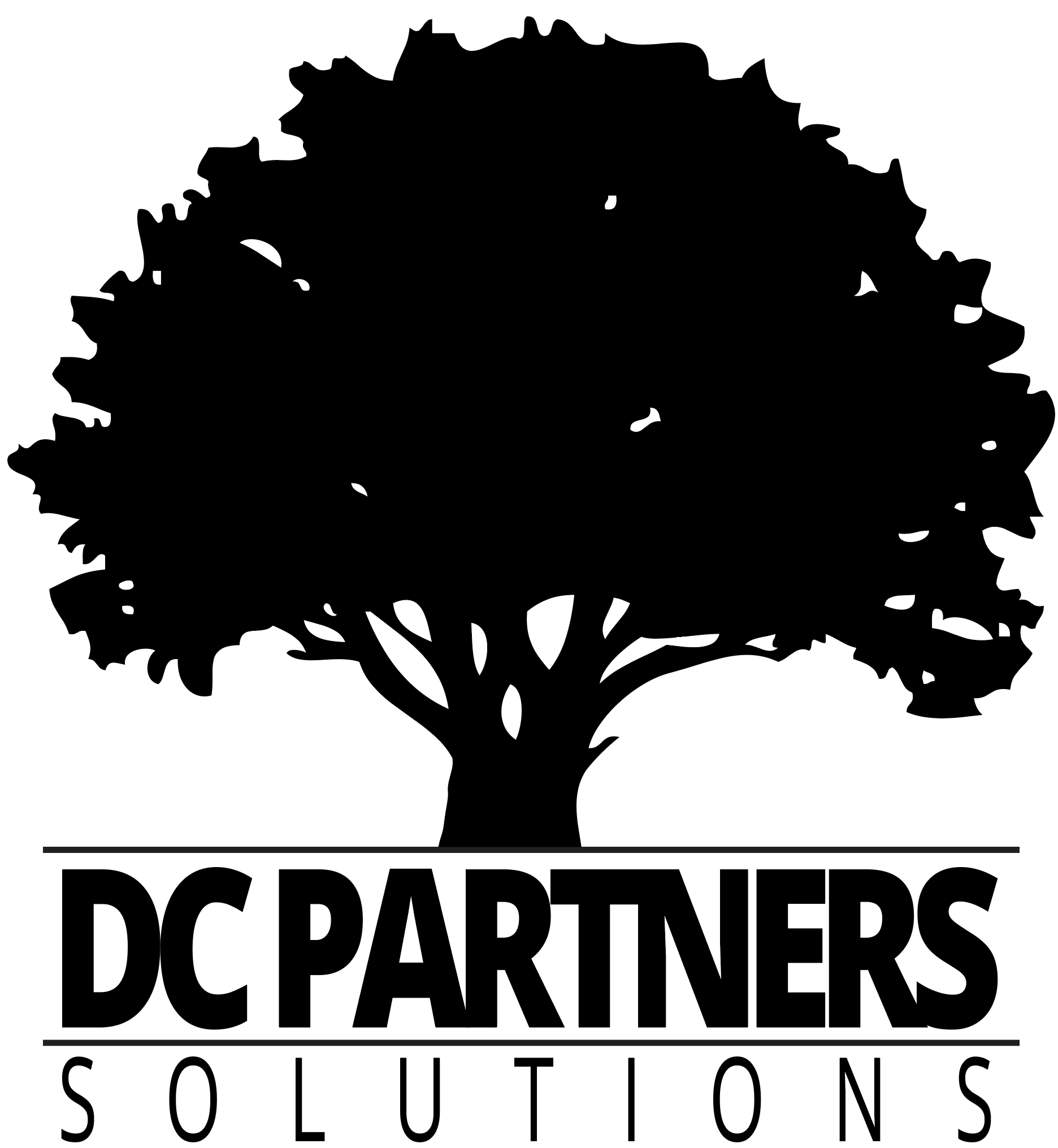 DC Partners Solutions