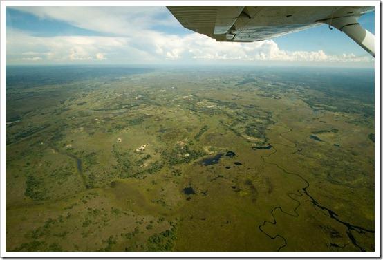 Three Days In Botswanas Okavango River Delta DC Rainmaker