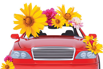 red car flowers