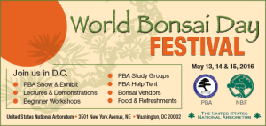 World Bonsai Day Festival